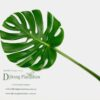 Monstera Leaf - Giant